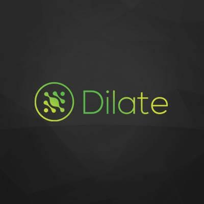 Dilate Digital Digital Marketing Agency Perth