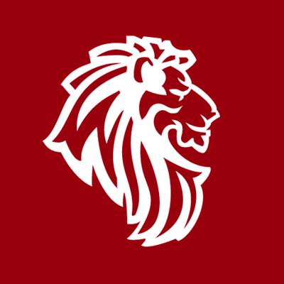 Lion and Lion Digital Marketing Agency Kuala Lumpur