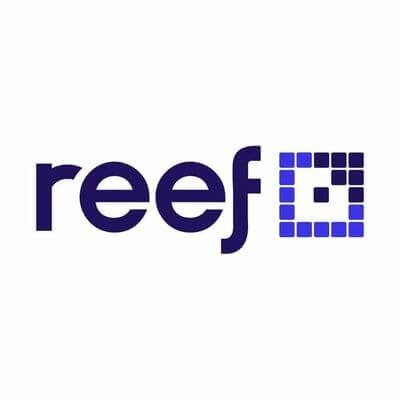 Reef Digital Digital Marketing Agency Sydney